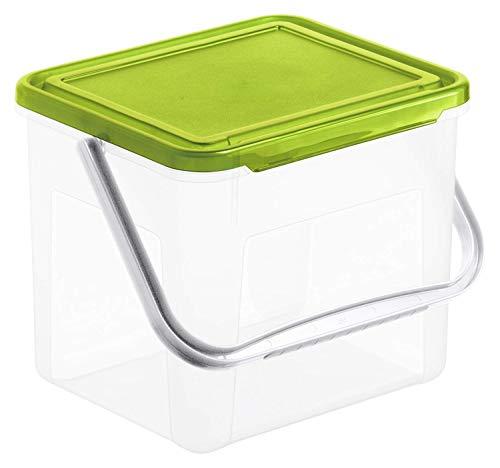 Rotho Basic Aufbewahrungsbox 5l mit Deckel und Henkel, Kunststoff (PP) BPA-frei, grün, 3kg/5l (21,0 x 20,0 x 18,0 cm)