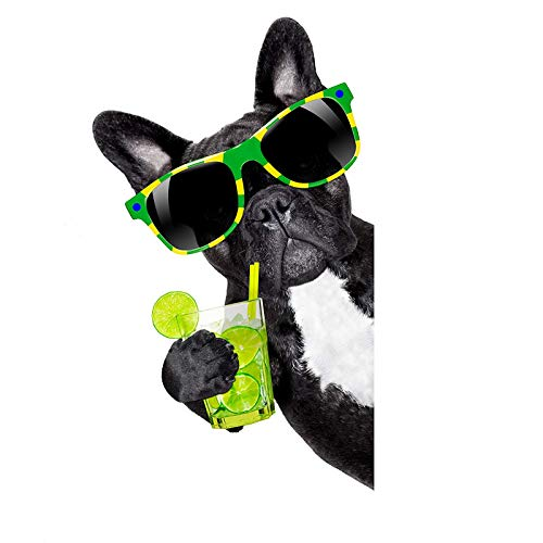 EW Designs Cool Black French Bulldog with Summer Drink and Sunglasses Vinyl Decal Bumper Sticker (4')