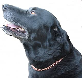ProExl Copper Magnetic Therapy Dog Collars Made to Measure in Solid Copper with Magnets