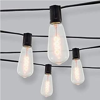 Inliten, LLC Threshold - 10ct Spiral Filament Outdoor String Lights Black Wire