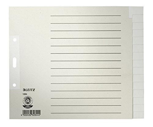 Leitz 25 x Register A4 blanko 15-teilig 100g/qm grau