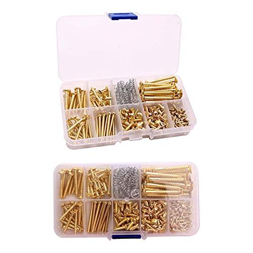 DSFSAEG Kit de tornillos para guitarra, 226 piezas, kit de caja surtido...