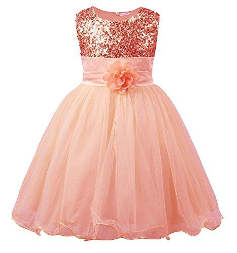 SwissWell Kinder Kleid für Mädchen mit Blume Ärmellos Hochzeits Festzug Stickerei Prinzessin Kleider Festkleid Abschlussball Ballkleid Pink 130-140cm