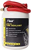 Tyre Sealants Review and Comparison