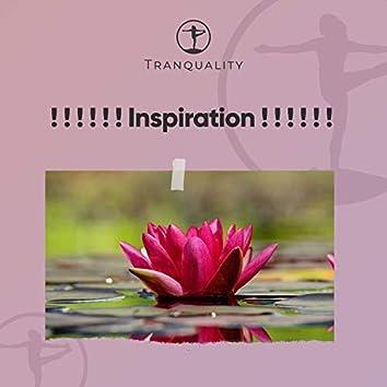 ! ! ! ! ! ! Inspiration ! ! ! ! ! !