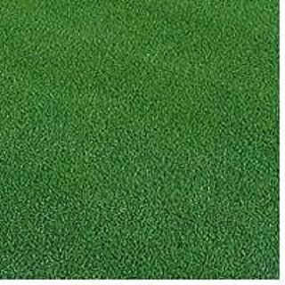 西洋芝の種 ペンクロス 240g 6坪(20平方メートル)分