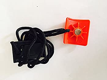 Icon Health & Fitness Inc Magnetic Safety Key 256957 or 253000 Works with NordicTrack Proform Reebok Image Gold s Gym Treadmill