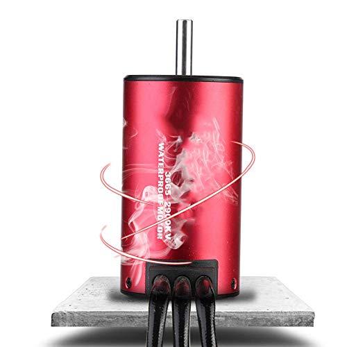 Dilwe RC Car Motor, wasserdichter RC Car Car Brushless Motor Upgrade Ersatzzubehör für 1/8 1/10 RC Car(2900 kV)