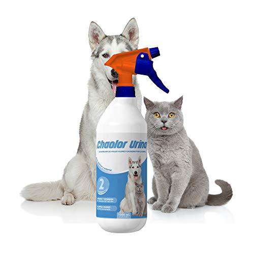 Rc Ocio Spray Neutralizador Enzimatico de Olores para orina, heces o vómitos de Perros y Gatos/eliminador de Malos olores producido por el Pipi de Las Mascotas para Interior y Exterior (1 Litro)