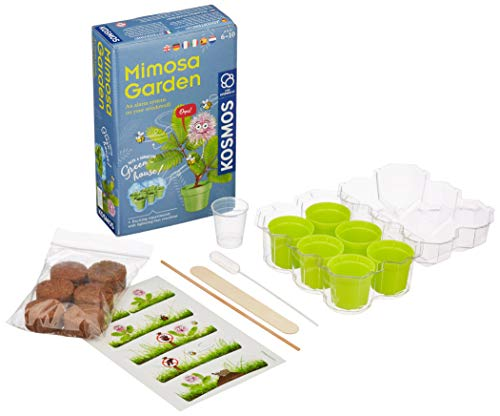 Kosmos 616809 Mimosa Garden - Mimosen Garten, Pflanzen züchten und erforschen Experimentier Set für Kinder mit mehrsprachiger Anleitung (DE, EN, FR, IT, ES, NL)