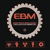 V/A - ELECTRONIC BODY MATRIX 2 (4 CD)