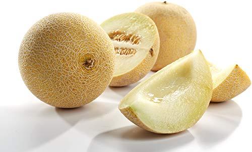 Obst & Gemüse Bio Honigmelone Galia (2 x 1 Stk)