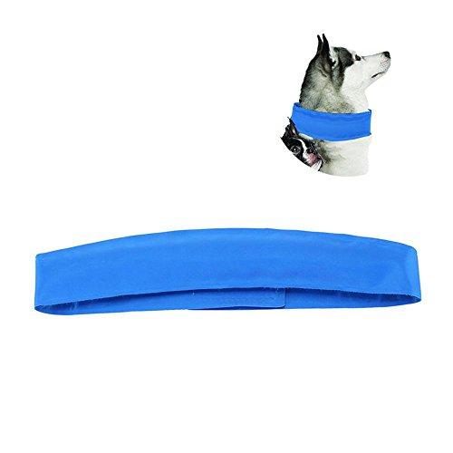 Pawaca Collar refrigerante para mascotas, Correa de perro refrigerante Cómodo Collar de Gato Bandana, Azul