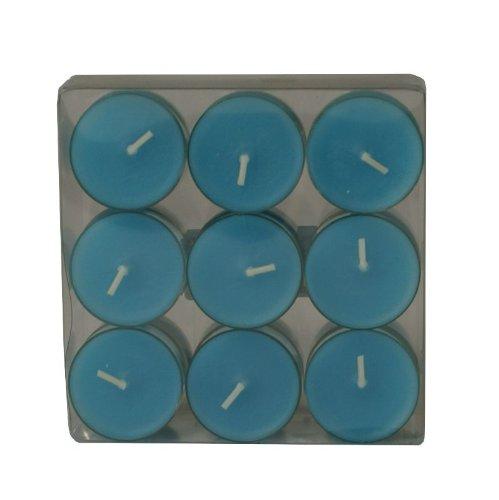 Wenzel-Kerzen 31-1522-18-50 Lot de 18 Bougies de Table avec bougeoir en Plastique 4 h de Combustion Turquoise