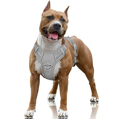 BARKBAY No Pull Dog Harness Large Step in Reflective Dog Harness with Front Clip and Easy Control Handle for Walking Training Running with ID tag Pocket(Grey,L)