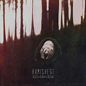 Hamishegi