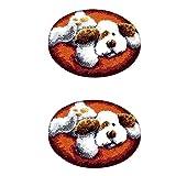 Fenteer 2 Juegos De Alfombras De Gancho Para Perros, Kit De 19.6 `` Cojín, Bordado De De Bricolaje
