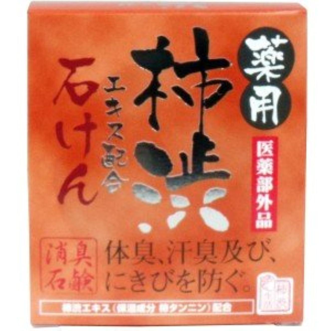 モスアイデアモス(2017年春の新商品)(マックス)薬用 柿渋エキス配合石けん 100g(医薬部外品)(お買い得3個セット)