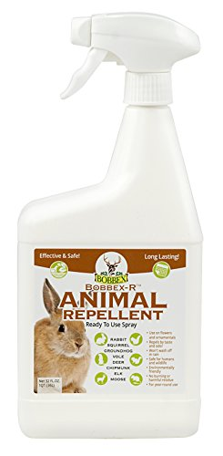Animal Repellent - Bobbex | Ready-To-Use Outdoor Rabbit, Squirrel, and Chipmunk Repeller Spray (32 oz.) B550125