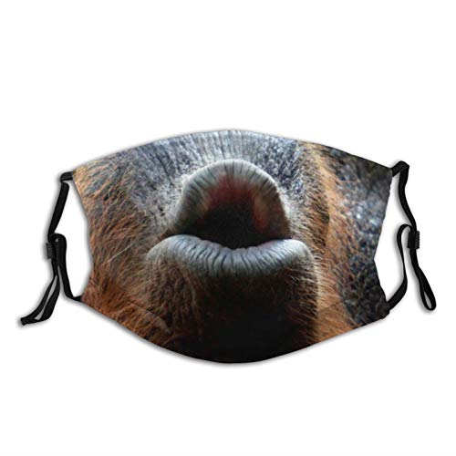 Orangutans Mouth Print Washable Mouth Neck Gaiter Mask Bandana Balaclava Breathable Reusable with 2 Filter for Adult Women Men & Teenager Outdoor Festival