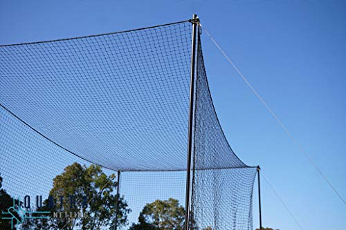 CW Cricket Batting Cage Net for Batting Practice & Training 100 x 10ft. Outdoor Backyard Ground Net