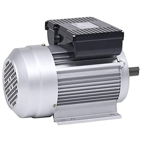 vidaXL Motore Elettrico Monofase Alluminio 1,5kW/2HP 2 Poli 2800 RPM