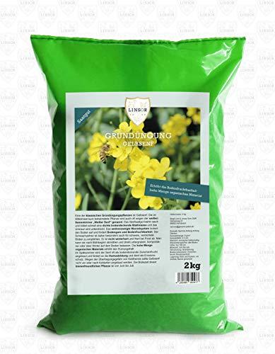 Linsor Gelbsenf Gründünger 2kg | Gründüngung Gelbsenf Gründünger Gelbsenf Senf Samen Gelber Senf Saat Bienen Saatgut Senf Gründünger Senf Weißer Senf Senfsaat Gründünger Bienenweide
