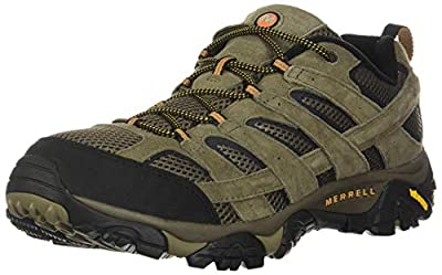 Merrell Men's Moab 2 Vent Hiking Shoe, Walnut, 7 M US