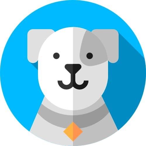 Dogs HD Wallpapers 8K