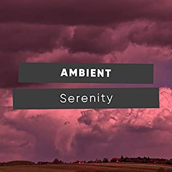 Ambient Serenity, Vol. 2