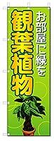 のぼり旗 観葉植物 (W600×H1800)フラワー・花屋さん