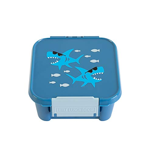 Little Lunch Box Co. Mini Snackbox für Kinder mit Unterteilungen | Bento Box | Brotdose (Shark)