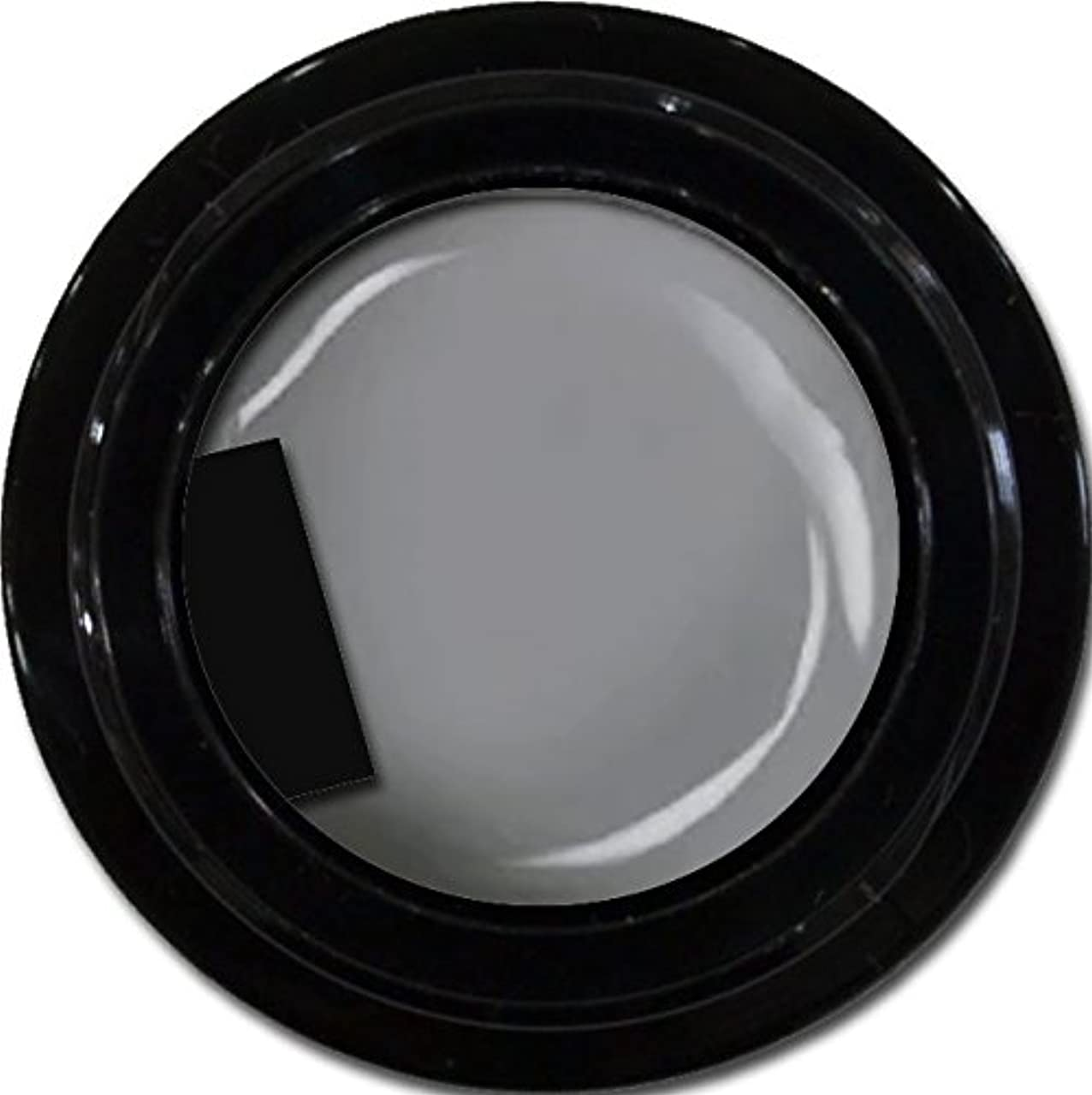 体細胞補体スツールカラージェル enchant color gel M807 LegendGray 3g/ マットカラージェル M807レジェンドグレイ 3グラム