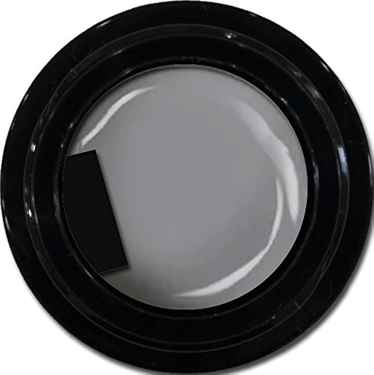 つまずくシンプルさ影カラージェル enchant color gel M807 LegendGray 3g/ マットカラージェル M807レジェンドグレイ 3グラム
