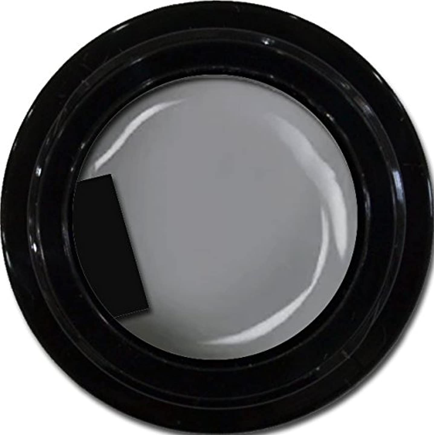 プロテスタント禁じる甘やかすカラージェル enchant color gel M807 LegendGray 3g/ マットカラージェル M807レジェンドグレイ 3グラム