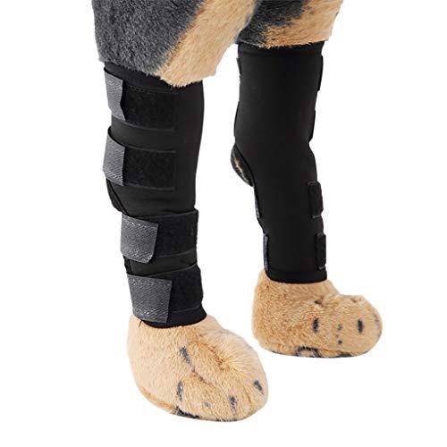 RUIXIB Hunde Handgelenk Joint Bandage 1 Paar Haustier Knieschoner Schützt Bein Sprunggelenk Wrap für Wundheilung und Arthritis Verstauchungen