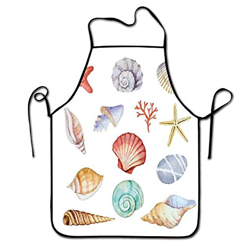 Bulk Scallop Nautical Creatures Of Summer Collection Mollusk Apron Seashells Winnee Animals Type Exotic Sweetheart Different Multi OPZukXiT