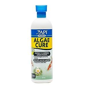 API POND ALGAE CURE Control Solution, Safe For Pets When U...