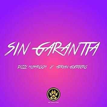 Sin Garantía (feat. Dizzy Mushroom)
