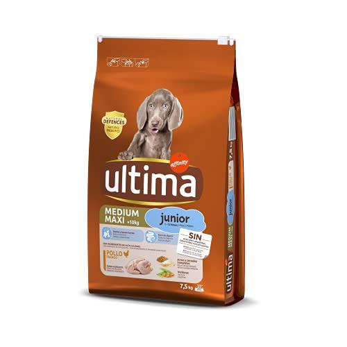 ultima Pienso para Perros Medium-Maxi Junior con Pollo - 7,5 kg