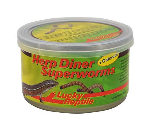 Lucky Reptile Herp Diner - Superworms 35 g, gekochte XXL Mehlwürmer mit Calcium