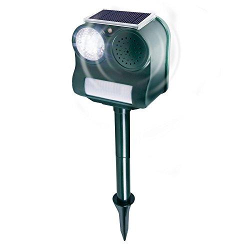 Gardigo Solar Vogelabwehr I Ultraschall und Blendlicht gegen Vögel I Schonend und effektiv I Für Garten und Balkon I Deutscher Hersteller