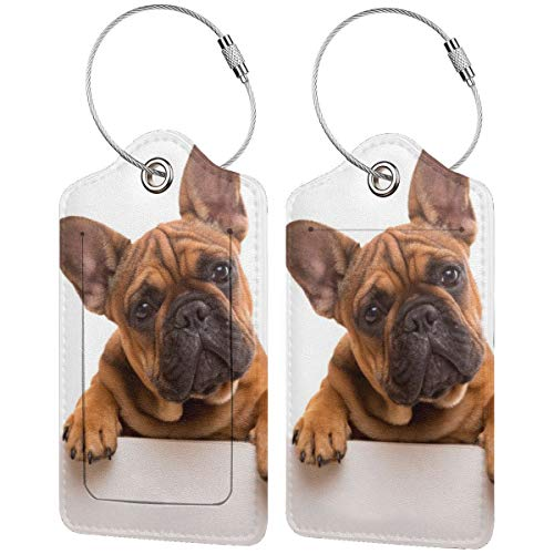 Funny French Bulldog Puppy Personalized Leather Luxury Suitcase Tag Set Travel Accessories Luggage Tags