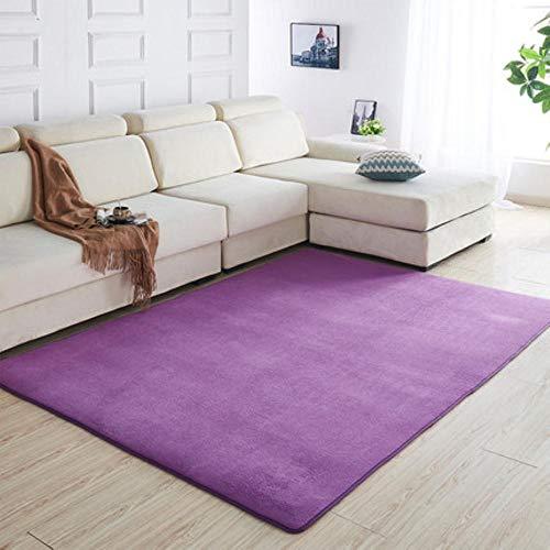 160 x200 Kortharig koraal fluwelen tapijt woonkamer vloermat salontafel mat slaapkamer deken bed vloerkleed vloermat deurkussen, 2.200 x180cm
