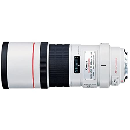 Canon EF 300mm f/4L IS USM Telephoto Fixed Lens for Canon SLR Cameras - 2530A004