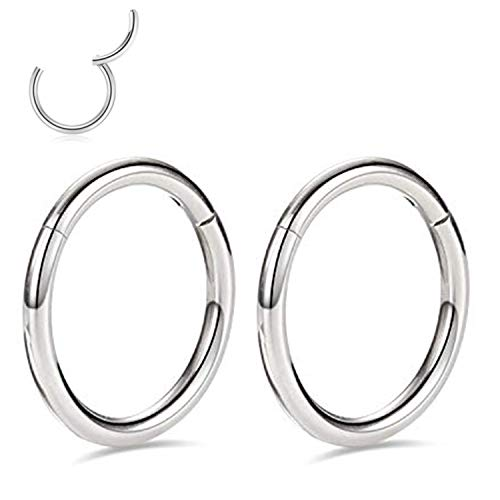 20g Cartilage Earring Rook Earrings 6mm Daith Earrings Tragus Earrings Anti-Tragus Earring Tiny Nose Ring Hoop Silver Plated Nose Rings 20 Gauge G23 Titanium