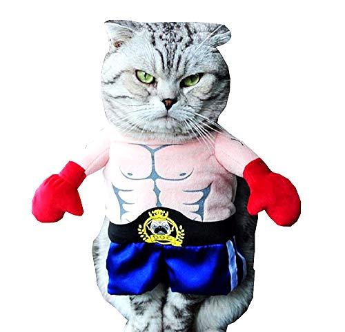 Vestito lottatore - Cena - Wrestling - Undertaker - Austin - gatto - Dwayn Johnson - Idea Regalo originale - L