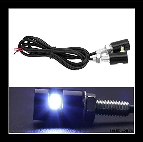 Teram Loisers - 2 luces para placa de moto, quad, scooter, café, Racer coche, aluminio anodizado, color negro