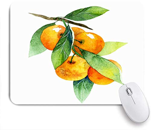 HUAYEXI Stoff Mousepad,Grüne Mandarine Aquarell Obst Mandarine Zweig Essen Trinken Natur Orange Zitrussaft Farbe Diät Essen,Rutschfest eeignet für Büro und Gaming Maus