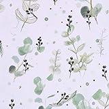 Lillestoff Bio Jersey Eucalipto Blätter Eukalyptus weiß